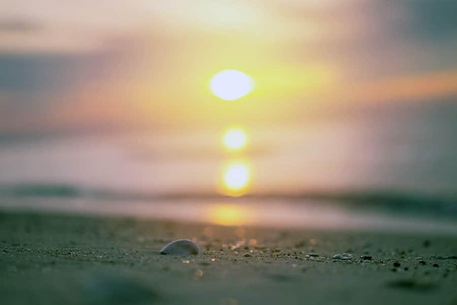 conoce las playas cerca de Mérida - inhubly.com