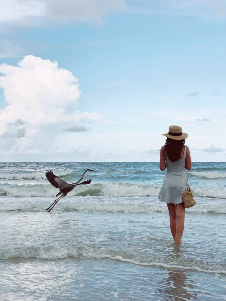 atardeceres en yucatan playas cerca de merida